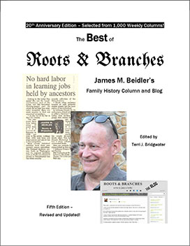 Best Of Roots & Branches